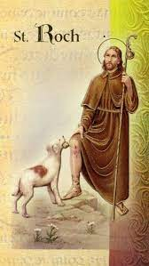 7 Saint Roch ideas | saints, patron saints, san rocco