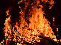 Thirty-two Japanese Nobles Burned Alive for the Faith - Nobility and  Analogous Traditional Elites